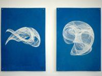 Attracteurs - series de cyanotype